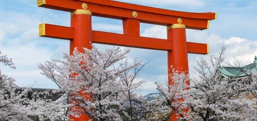 kyoto torii